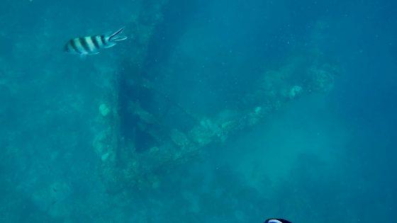 コロン島 沈没船