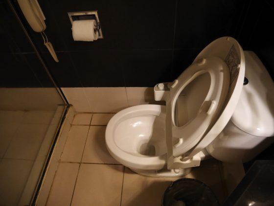 パールガーデンホテル マニラ のシャワールーム ウォシュレット付きトイレ