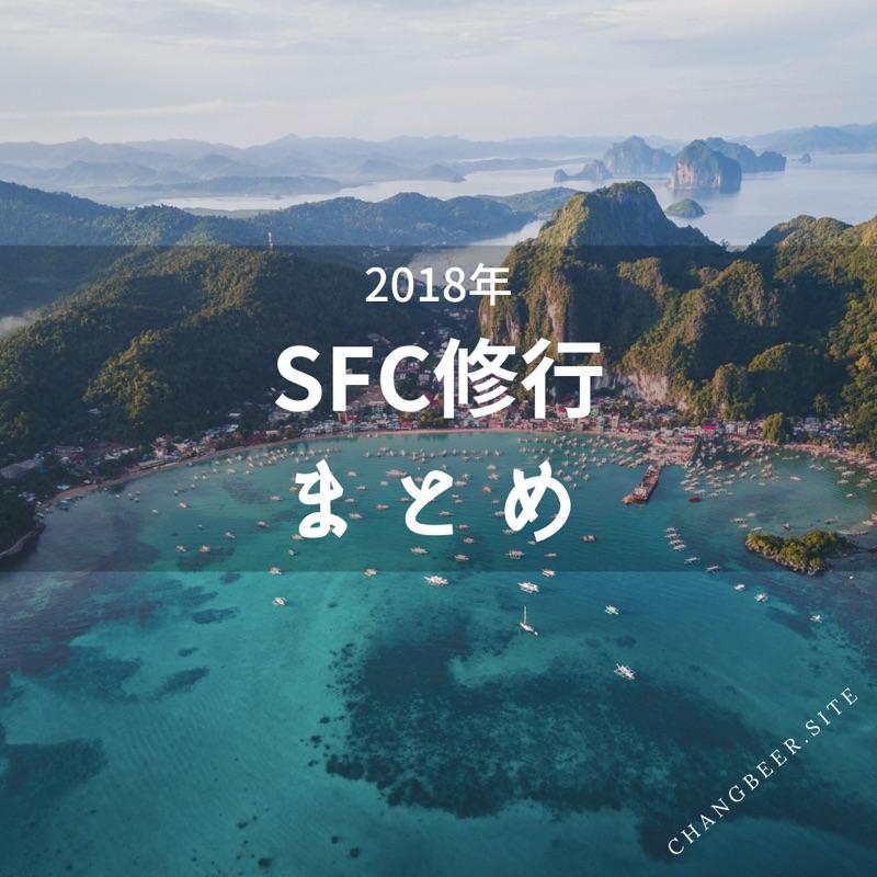 2018年のSFC修行まとめ(費用、国内・国際線ルート、PP単価を公開)