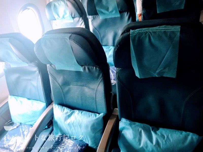 フィリピン航空 A321-231エコノミークラス搭乗記/PR427(エコノミークラスの座席)