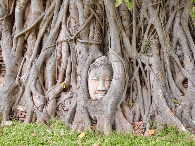 世界遺産アユタヤ観光のワットマハタート(有名な木の中にある仏頭)