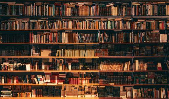 ブログやるなら最初に読むべきおすすめ本・書籍8選(本棚のイメージ)