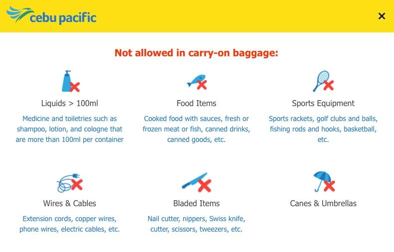セブパシフィック航空のウェブチェックイン(持ち込み禁止グッズ)