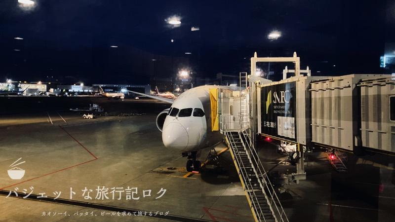 JAL深夜便B787-9フルフラットシート・ビジネスクラス搭乗記(安定したフライトでした)