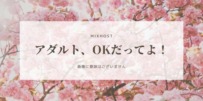 MIXHOSTを長らく使った感想・口コミ・評判レビュー(アダルトOKなレンサバといえば、Mixhost)
