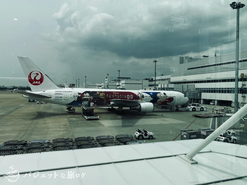 エニタイムフィットネス福岡空港(「JAL DREAM EXPRESS FANTASIA 80」)